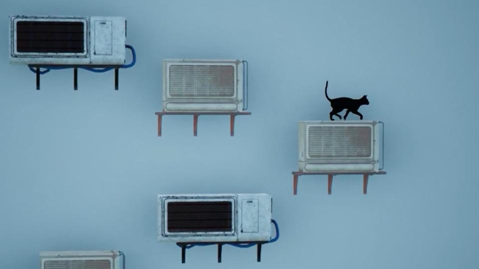Eine Katze steht auf einer Klimaanlage, vor einer grauen Wand mit weiteren Klimaanlagen.